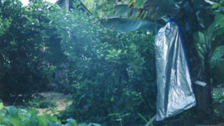 WWOOFクーロイ(ホストファミリーの庭)