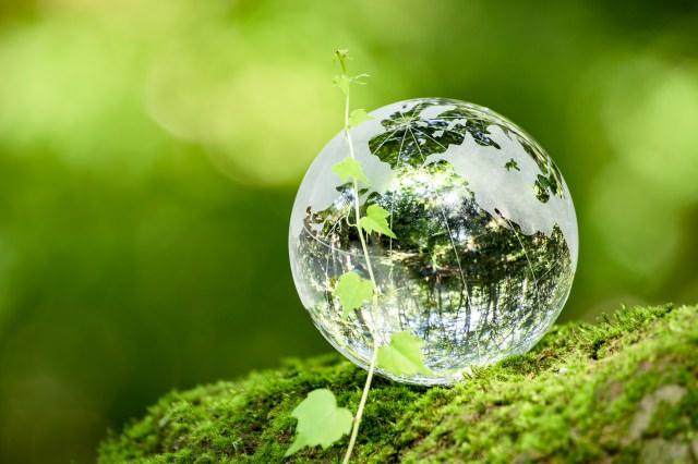 地球儀と緑(エコイメージ)