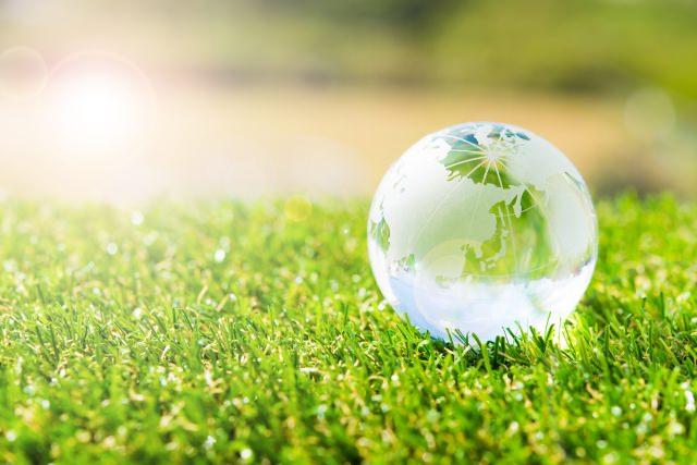 地球儀と草(まとめ用イメージ画像)