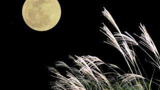 十五夜(お月見)