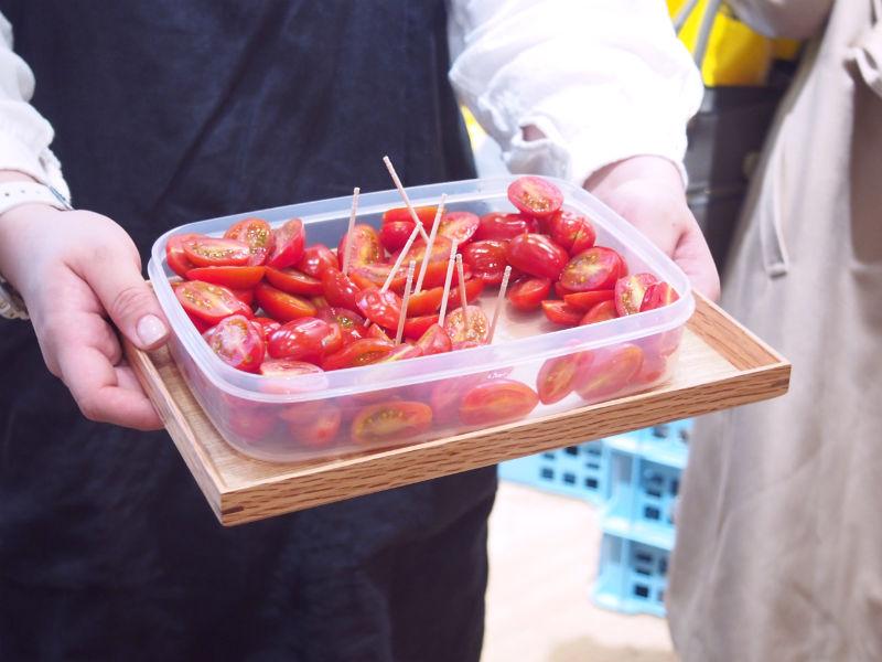 有機トマトの試食