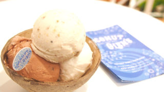 ココナッツグレン(COCONUT GLEN'S)のヴィーガンアイス